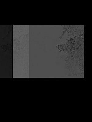 Cameron Martin: inverse 3, 2012, 61 x 46 cm