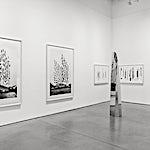 Espen Dietrichson: Installation view 2, 2015