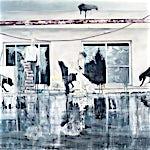 Frank Brunner: the pool #1, 2007, 150 x 200 cm