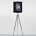 Ole Jørgen Ness: Nature Morte, 2015, 180 x 50 cm